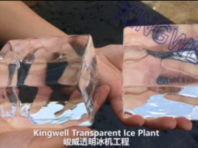 Video of Kingwell transparent ice plant
