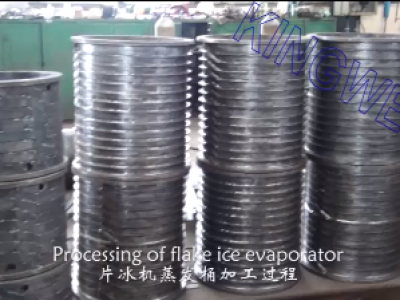 Processing of flake ice evaporator